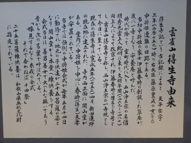 166-4-6.jpg