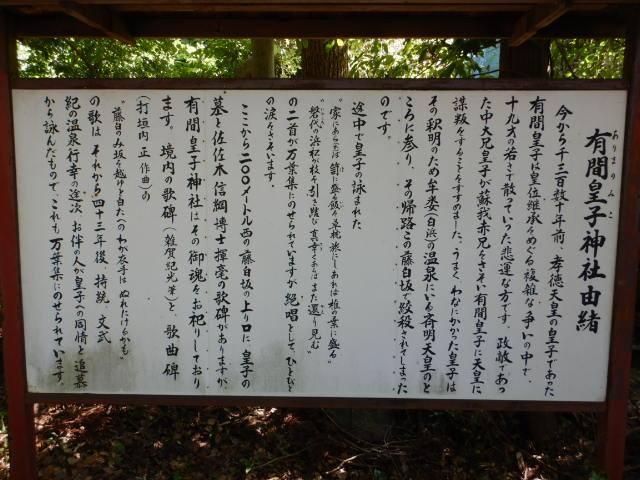 166-5-10.jpg