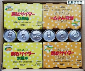 ジャパンフーズ びわ梨サイダー02 201903