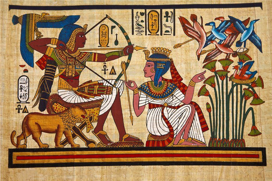 papyrus_08_shooting.jpg