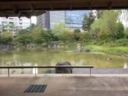 六本木 檜町公園 休憩所からの眺め