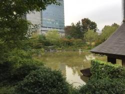 六本木 檜町公園 見事な池1