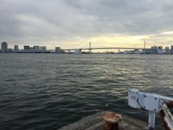 豊海 フィッシャリーズテラス レインボーブリッジとお台場の風景