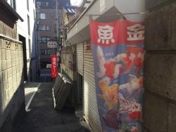 六本木ヒルズ 本郷菊坂 金魚屋