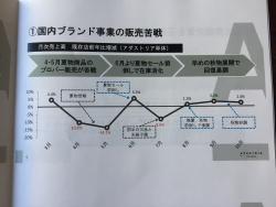 アダストリア 2018年経営報告会 販売苦戦を説明した資料1