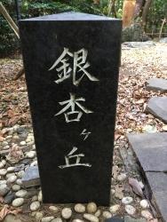 赤坂 銀杏が丘2