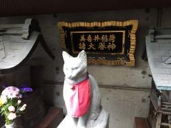 赤坂 美喜井稲荷神社 猫1