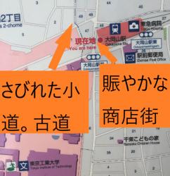 大岡山・洗足池 さびれた小道 賑やかな商店街 地図