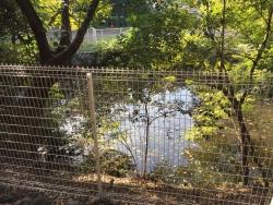 東工大 謎の池