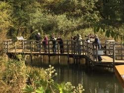 洗足池散策 水生植物園 カメラの人たち