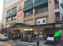 黒柳徹子 トットちゃん トモエ学園 ピーコック前1