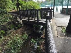 暗渠散歩 洗足流れ 清水窪流れ11 桜山の下2