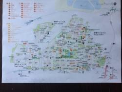 東大散策 地図(カラー)