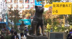 東大散策 渋谷 ハチ公像