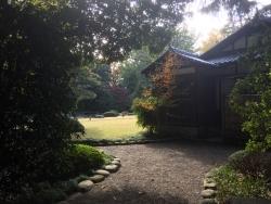 東大 懐徳館庭園2