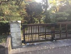 東大 懐徳館庭園入口