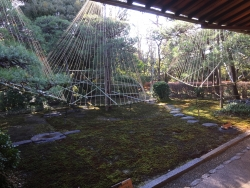 成城学園 猪俣庭園 室内1