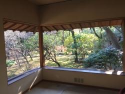 成城学園 猪俣庭園 室内3