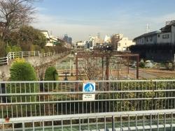 成城学園 富士見橋 貸菜園