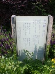 麻布十番 横浜山下公園 赤い靴2