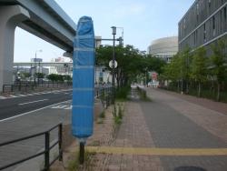 開場前豊洲市場 バス停 布で覆われている