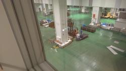 開場後豊洲市場 水産卸売場棟 床が緑色