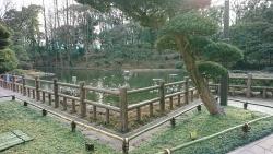 戸越公園 パンケーキ 戸越公園 日本庭園