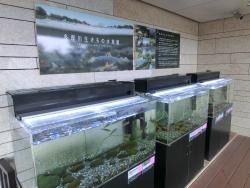 ミニ水族館 ナチュラム記事