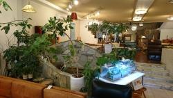ダニエルの泉1 横浜山手