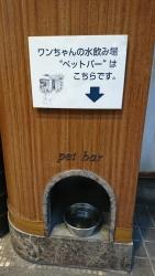 犬の水飲み場 横浜山手