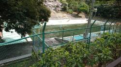元町公園プール2 横浜山手