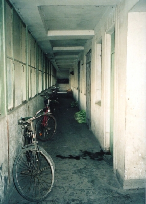 アパートの廊下に備蓄用の白菜を積んでおく 1992 北京