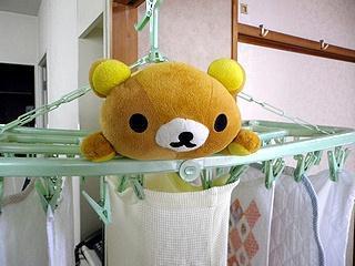 クマジ洗濯干し