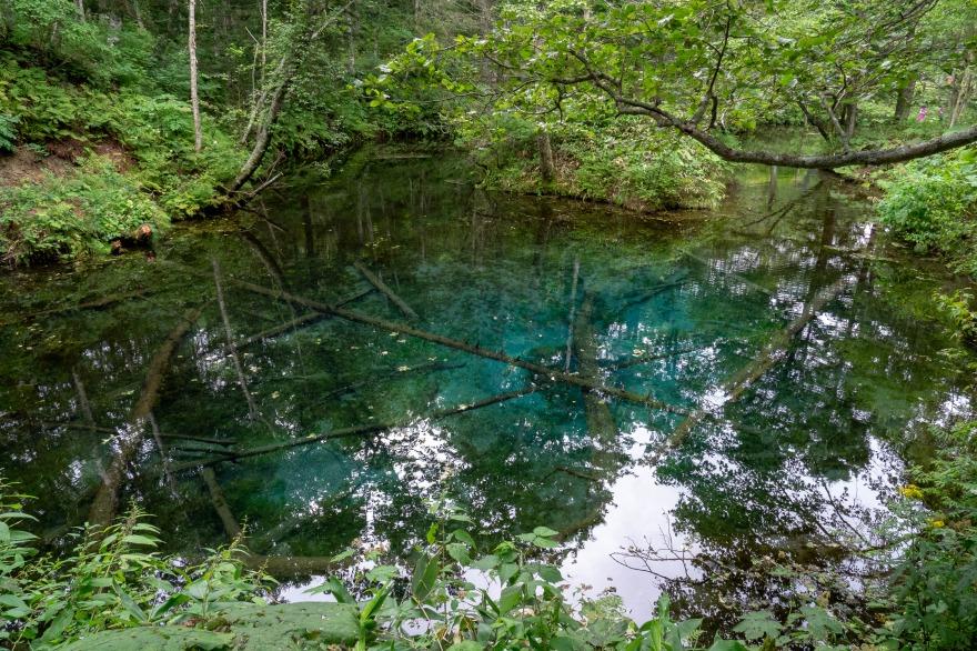 神の子池 (2)