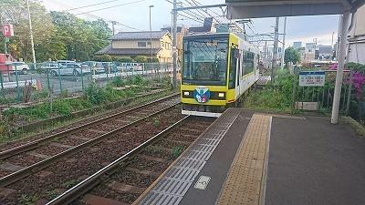 190427yoshino.jpg