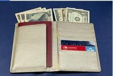 安心安全パスポートケース白蛇(七福財布)使用例1