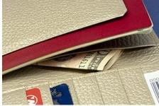 安心安全パスポートケース白蛇(七福財布)使用例2