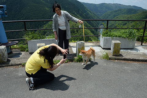 dog20180504_2.jpg