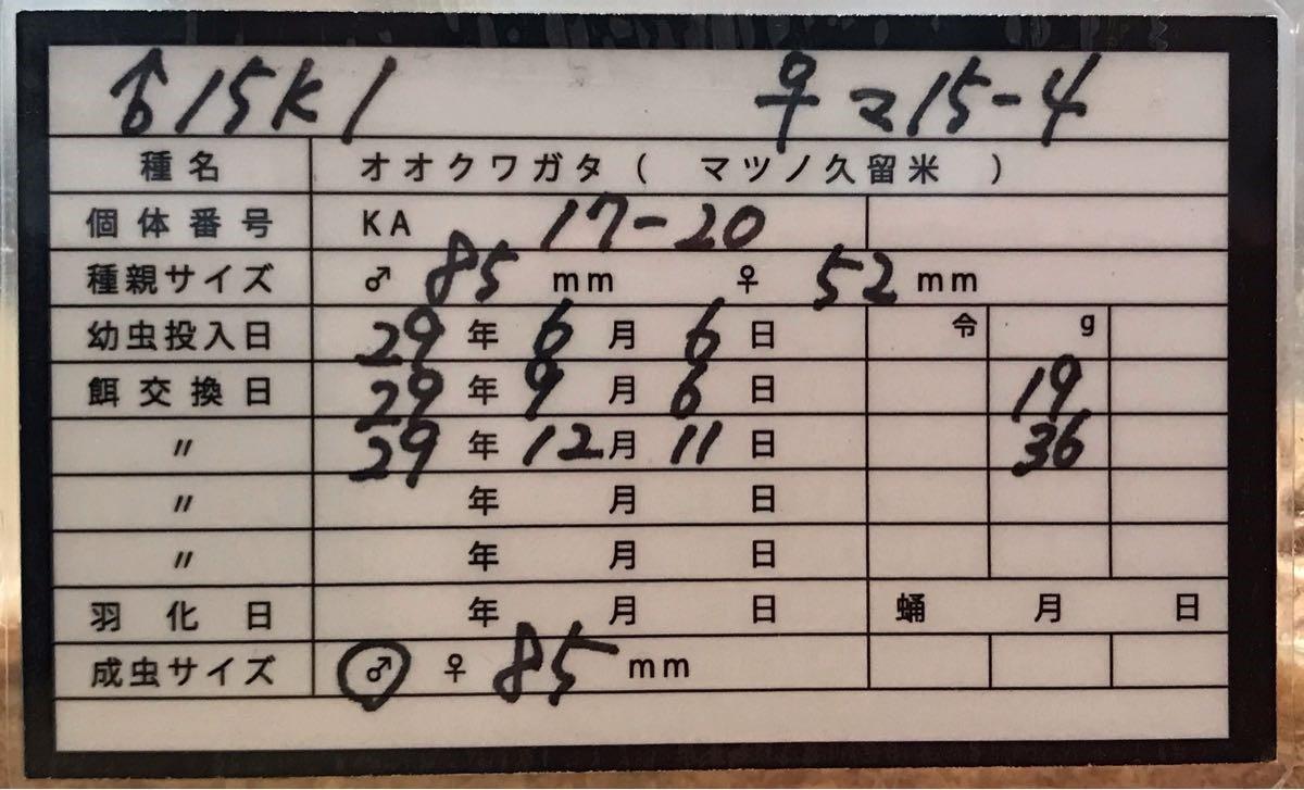 KA17-20 管理表