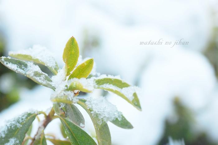 photo190112.jpg