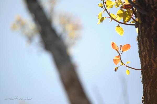 photo190424.jpg