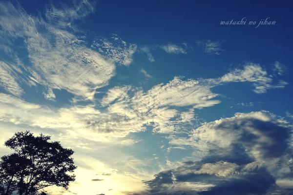 photo20190903.jpg