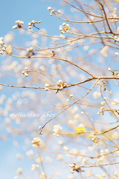 photo20191029.jpg