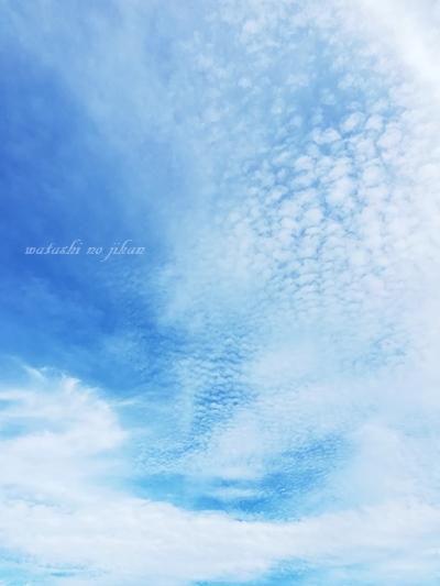 sky0190823.jpg