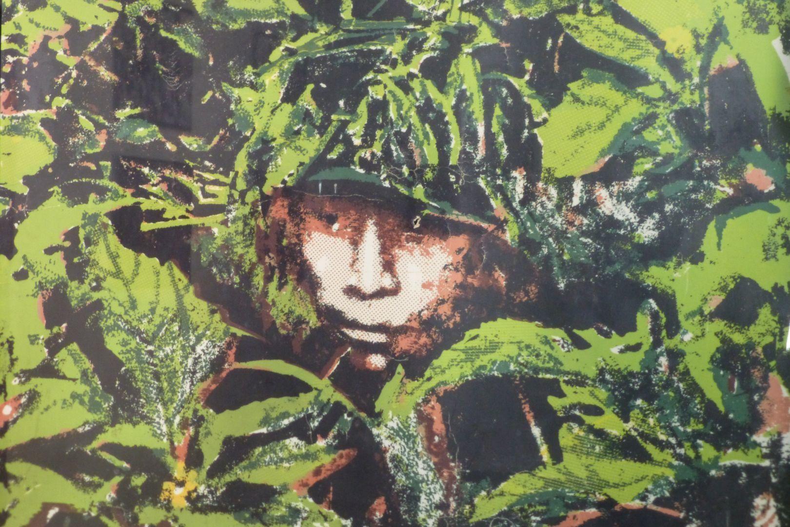 guerrilla en el bosque de morazan