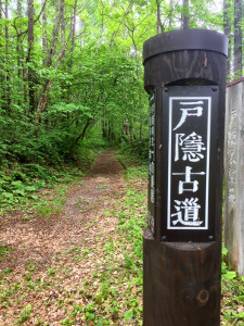 blog_2019_05_31_5.jpg