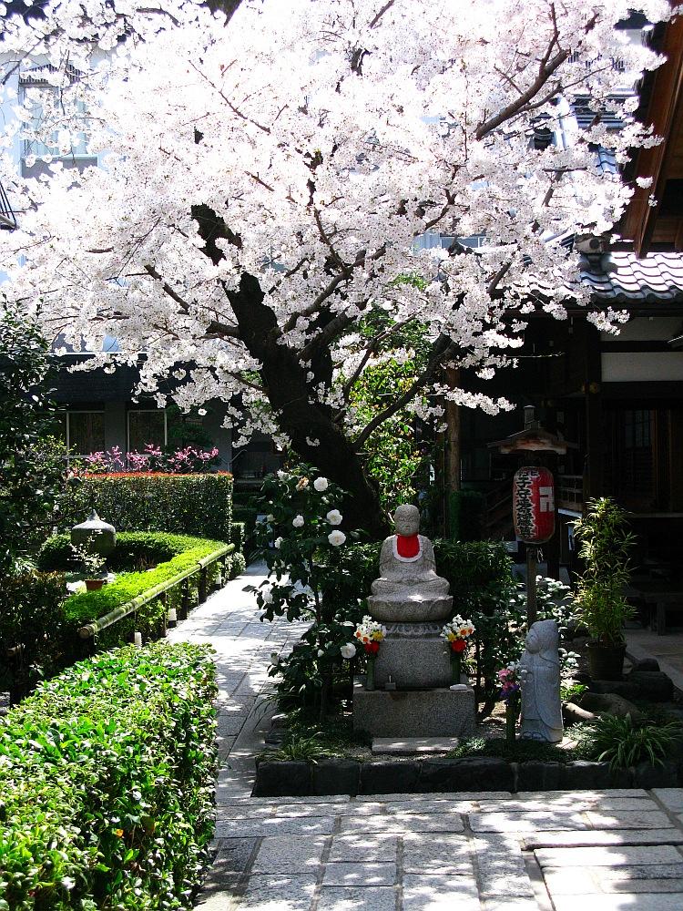 2014_04_01 京都37