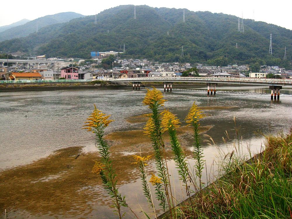 2014_10_26 広:118黒瀬川