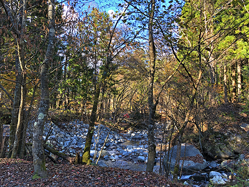 道志の森キャンプ1 001