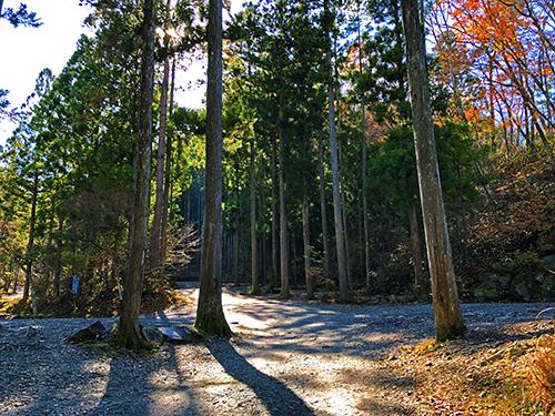 道志の森キャンプ3 031